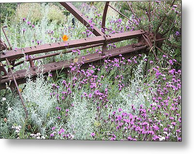 Metal Print featuring the photograph Out Of Danger Nb by Susan Alvaro