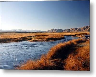 Owens River Metal Print by Michael Courtney