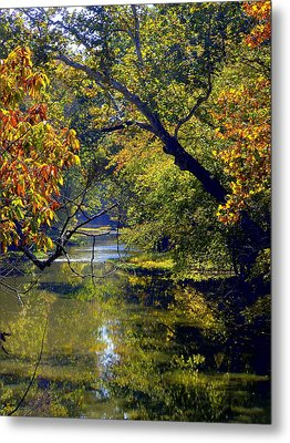 Pairie Oaks Metal Print by Mindy Newman