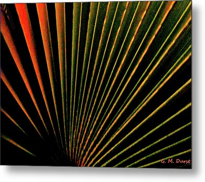 Palm Lines Metal Print by Michael Durst