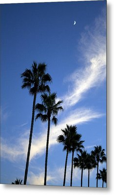 Palm Trees In The Sky Metal Print