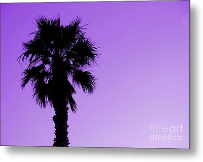 Metal Print featuring the photograph Palm With Violet Sky by Kim Pascu