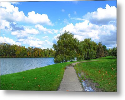 Metal Print featuring the photograph Path by Michael Frank Jr