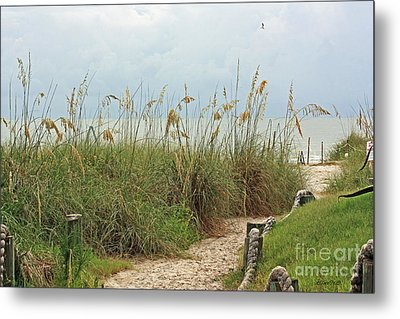 Pathway To The Gulf Metal Print by Terri Mills