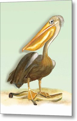 Metal Print featuring the painting Pelican Bill by Anne Beverley-Stamps