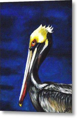 Pelican Portrait Metal Print by Kim Selig