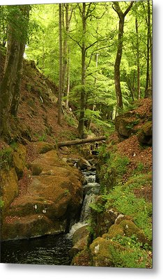 Picturesque Creek Metal Print