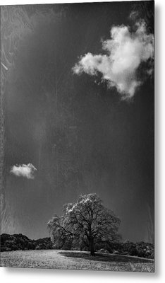 Places We Remember Metal Print by Laurie Search