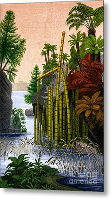 Plants Of The Triassic Period Metal Print by Science Source