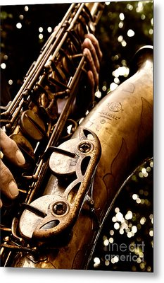 Play For Me Metal Print by Lisa Williams