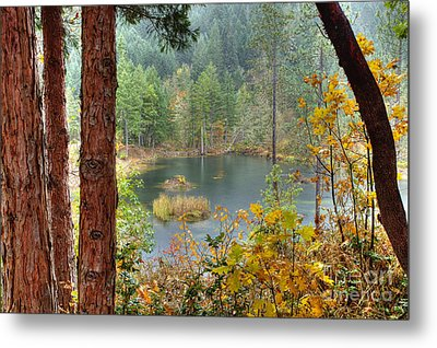 Pond At Golden Or. Metal Print by Jim Adams