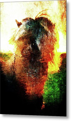 Pony Metal Print by Andrea Barbieri