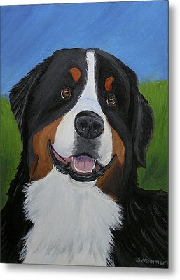 Metal Print featuring the painting Portrait Of A Bernese Mountain Dog by Sharon Nummer