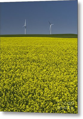 Prairie Generations Metal Print by Royce Howland