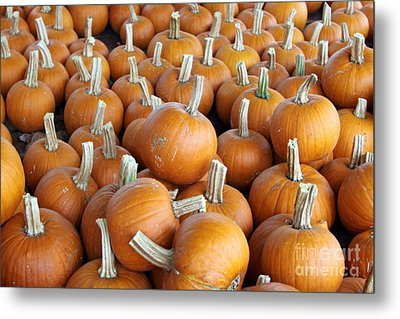 Metal Print featuring the photograph Pumpkins by Denise Pohl