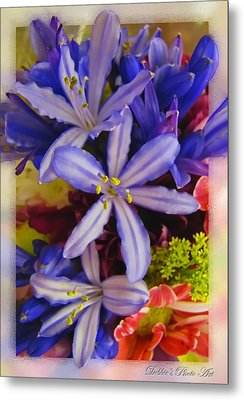 Metal Print featuring the photograph Purple Stars by Debbie Portwood