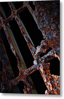 Rat In The Cage Metal Print by Empty Wall
