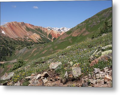 Metal Print featuring the photograph Red Mountain by Marta Alfred