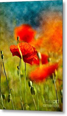 Red Poppy Flowers 01 Metal Print