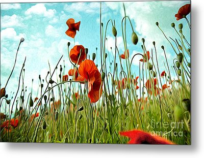 Red Poppy Flowers 03 Metal Print by Nailia Schwarz