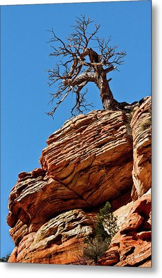 Remnants Of A Struggle Metal Print by Christopher Holmes