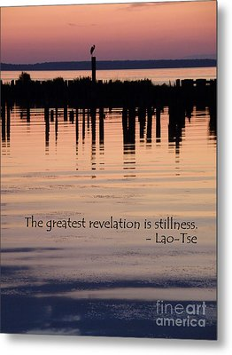Metal Print featuring the photograph Revelation by Lainie Wrightson