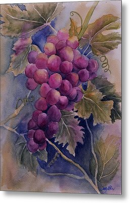 Ripening On The Vine Metal Print by Sandy Fisher