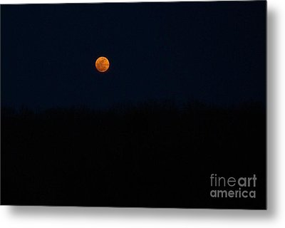 Metal Print featuring the photograph Rise Of The Harvest Moon by Julie Clements