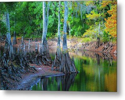 Riverside Metal Print by Bill Barber