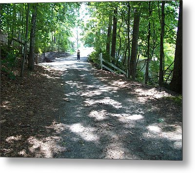 Metal Print featuring the photograph Road Less Traveled by Lou Ann Bagnall