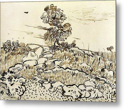 Rocky Ground At Montmajour Metal Print by Vincent van Gogh