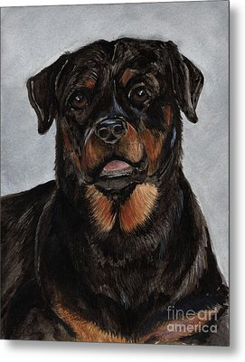 Metal Print featuring the painting Rottweiler  by Nancy Patterson