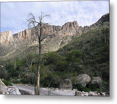 Sabino Canyon Az Metal Print