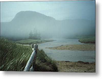 Sand Beach Fog Metal Print by Brent L Ander