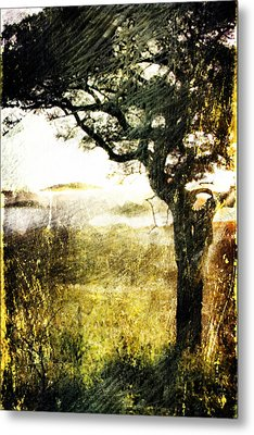 Savana Metal Print by Andrea Barbieri