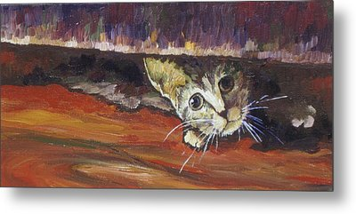 Scaredy Cat Metal Print by Sandy Tracey