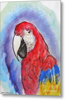 Scarlet Macaw Metal Print by M c Sturman