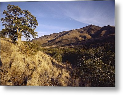 Scenic View Of The Yakima Valley Metal Print by Sisse Brimberg