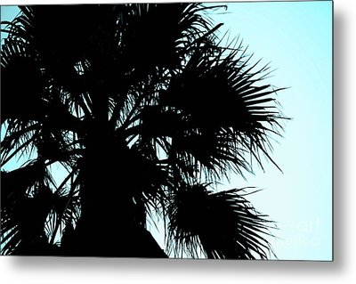 Metal Print featuring the photograph Silhouette by Kim Pascu