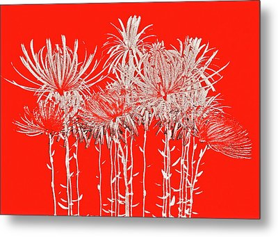 Silver Stems On Red Metal Print by James Mancini Heath