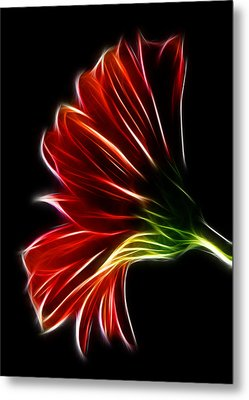 Metal Print featuring the photograph Simplicity by Joetta West