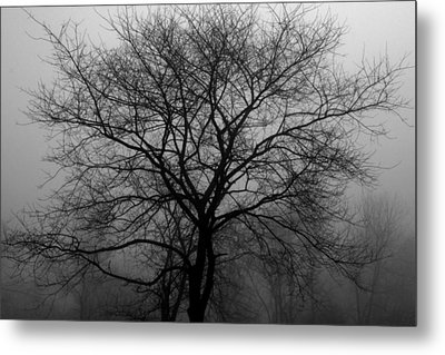 Skeletons In The Fog Metal Print