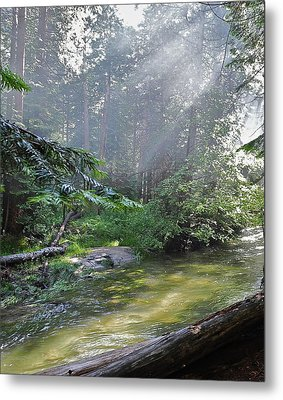 Metal Print featuring the photograph Slanting Sunlight On River by Kirsten Giving