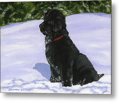 Metal Print featuring the painting Snow Baby by Sharon Nummer