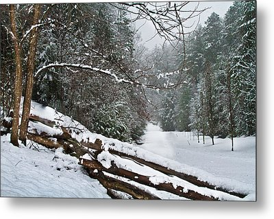 Snowy Fence Metal Print by Debra and Dave Vanderlaan