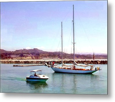 Something For Everyone Metal Print by Elaine Plesser