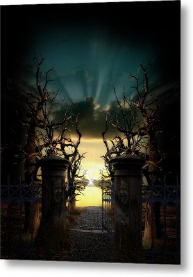 Souls Night Metal Print by Lisa Evans
