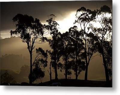 Stark Metal Print by Lee Stickels