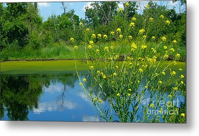 Metal Print featuring the photograph Summer's Glory by Jim Sauchyn