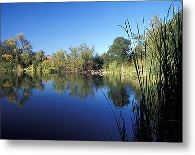 Summertime Reflections Metal Print by Kathy Yates